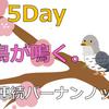 5Dayー閑古鳥が鳴くー:7日間連続バーナンノック
