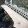 【ハウスDIY進捗】カウンターテーブルになる板の位置仮決め