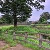 宇田川を歩く