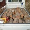 薪ストーブ始生代95 茶畑山で薪仕事。ようやく薪割りに集中できる環境が整った