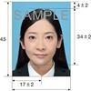 【海外旅行】パスポートの申請から発行まで必要な手続き、書類のまとめ【お盆に申請が多い】