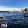 新シドニー滞在記 最終回 ゴミみたいな愚痴なのでスルー推奨です