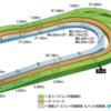 第299R 東京競馬 白秋S、オクトーバーS(L)
