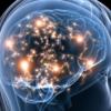 脳を覚醒してくれる6大神経伝達物質 アセチルコリン・ノルアドレナリン・ドーパミン・セロトニン・グルタミン酸・ギャバ