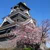 石垣が好き   ~熊本城~