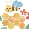 女王バチが巣からいなくなるとどうなる!新女王バチはどうやって誕生するの!