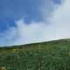◆7/26     笙ヶ岳&鳥海湖④…御浜・鳥海湖分岐~御田ヶ原分岐