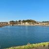 KAYAK55の池(仮称)(千葉県市川)