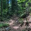 Trail 探検 2018/06/16