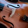 エヴァピラッツィ・ゴールドですべての弦を揃える
