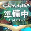 2018/4/13 新企画展、明日スタート!