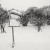 雪の世界はモノクロームがいい!その1