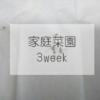 【バジル栽培3週目】枯らしてしまった・・・