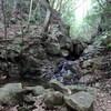 地蔵谷から上野道へのハイキング(その3)地蔵谷後半
