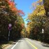 草津温泉から紅葉の奥志賀スーパー林道