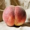 桃の美味しいおすすめ品種を一挙紹介!シーズンごとの移り変わりを意識して比較して楽しむべし