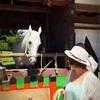 上賀茂神社 加茂の水まつり♪神様が降りて来たよー!