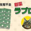 猫の慢性腎不全 新薬「ラプロス」 Chronic renal failure in cats: RAPROS of new drugs