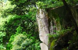 「日本で最も美しい村」で出合った絶景&神秘的な2大遺跡!in和束町