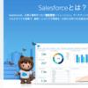 SFDC:Salesforce導入の流れ - Part 1