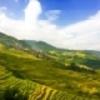 中秋節桂林旅行(8)龍脊棚田の絶景を眺める