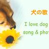 犬の歌ページ