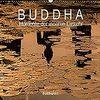 仏教の教えは、生きとし生けるものが幸せでありますように、と言う教えでしょうか?