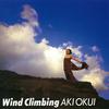 奥井亜紀『Wind Climbing』