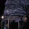 オリンパスSH-2で龍峰寺の桜