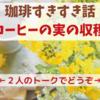 【コーヒーすきすき話】コーヒーの実の収穫