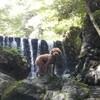 檜原村「神戸園」で川キャンプ:川遊び、滝行、虹鱒釣り、犬同伴