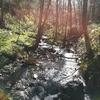 札幌岳を登山|豊平峡温泉、「花見月」は自宅兼蕎麦屋?