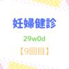 29w0d 妊婦健診【9回目】 最後の健診