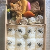 崎陽軒のシウマイ弁当とタピオカ