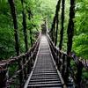 【徳島】ゾクッとするほど深山幽谷!秘境「奥祖谷二重かづら橋」は知る人ぞ知るもうひとつのかづら橋