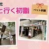 【柴犬】初詣!ペット祈願ができる少彦名神社! Shiba Inu goes to HATSUMODE
