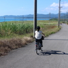『冬だって沖縄旅!』最終回.レンタサイクルで巡ろう!南国の離島、小浜島!