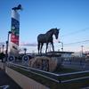 北海道の道の駅「サラブレッドロード新冠」