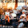 The Velvet Underground - Flowers Of Evil