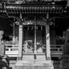 北鎌倉の細道 其の七 ~ 春・朝比奈切通し/熊野神社 ~