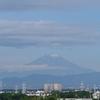 久し振りの「富士山」。