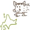 北海道でイノシシを探す