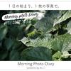 #11 Morning Photo Diary〜ファンをつくりたい〜