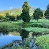 おしぼら池(長野県飯田)