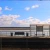 【観光】ユールマラ観光の玄関口・マヨリ駅の輝き【写真11枚】