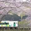 桜とローカル線と花見