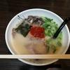 長崎で人気上昇中のラーメン屋さん「麺屋 富貴」
