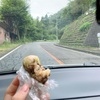 【ウクレレ】を持って旅に出よう!〜長野1泊旅行①山梨の桔梗屋で信玄餅の詰め放題してきたよ〜