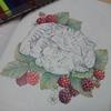 ラズベリー(木苺)を色辞典で塗ってみました☆おとニャーの塗り絵ノートより
