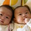 【双子の男の子】食べる量が将来恐ろしい件